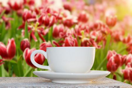 Morning coffee in the Flower Garden photo