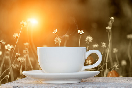 morning coffee and grass flower photo