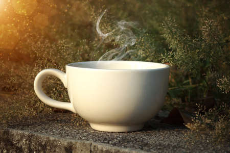 Coffee cup with small flower grass photo