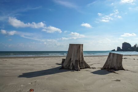 Timber and Blue sky on the beach at Andaman sea photo