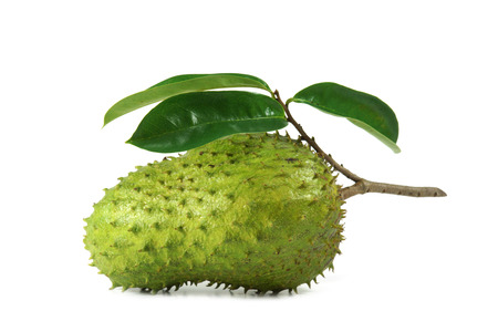 Soursop, Prickly Custard Apple. (Annona muricata L.) Stock Photo