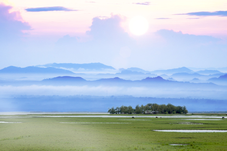 southern of thailand: Wildlife sanctuaries of southern Thailand. (Wetland)