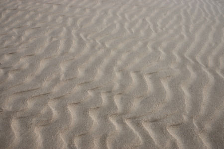 aridness: Lines in the sand of a beach. Out of focus image. Stock Photo