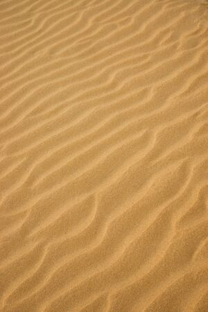 aridness: Lines in the yellow sand of a beach. Out of focus image. Stock Photo