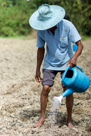 planters: SONGKHLA THAILAND - February 19, 2016: Gardeners are watering the seeds on the ground at February 19, 2016 in Songkhla, Thailand.