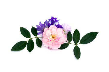 The bouquet of pink fairy rose,  Queens wreath flower and Oxalis flower with leaf on white background Stock Photo