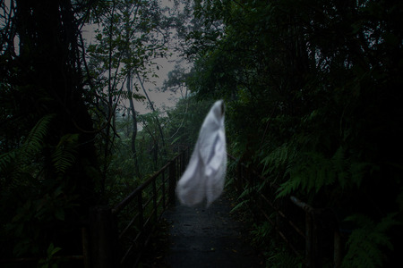 wilds: Low key image of ghost on the nature walk in the rain forest. Stock Photo