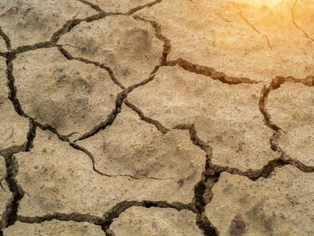 aridness: Dry soil in summer with sunlight.