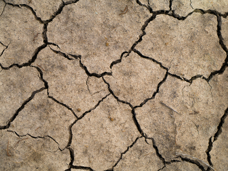 Dry soil in summer