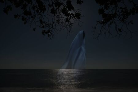 dense: Low key image of ghost in the night on the beach.