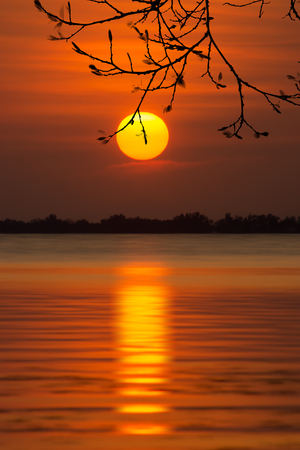 Big sun and Sunset sky reflection on the water with silhouette tree branch at the lake.