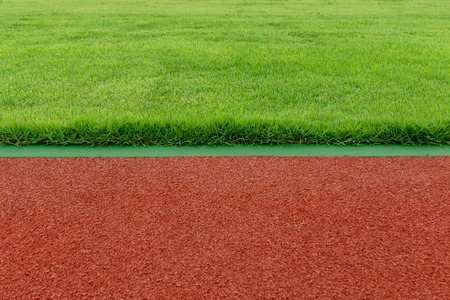 The grass and treadmill in the stadium.