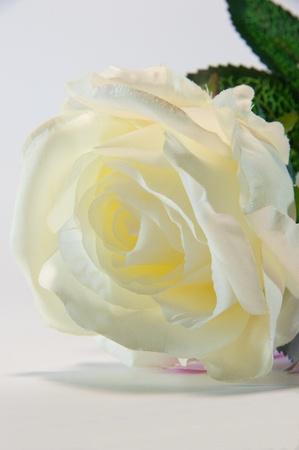 Close up of yellow handmade fabric rose photo