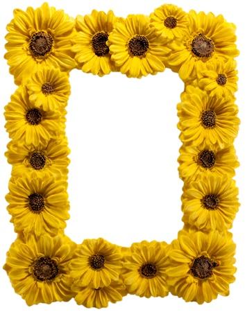 Sunflowter photo frame on white background photo