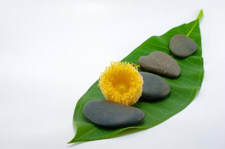 Close up of stone represent spa concept Stock Photo - 13884562