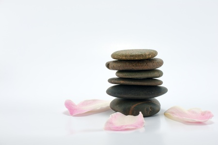 Close up of stone and flowers represent of spa concept Stock Photo - 13884549