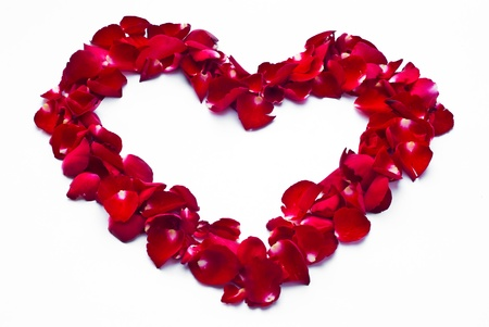 Framework in the form of the heart made of red roses. Stock Photo - 8688327