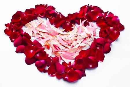 Framework in the form of the heart made of red roses. Stock Photo - 8688342