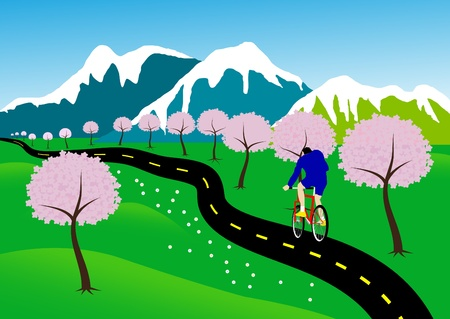 Bicycle paths in nature, with cherry blossoms along the path.