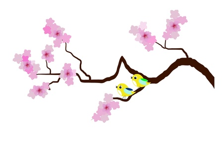 cherry blossom with birds Stock Vector - 18182554