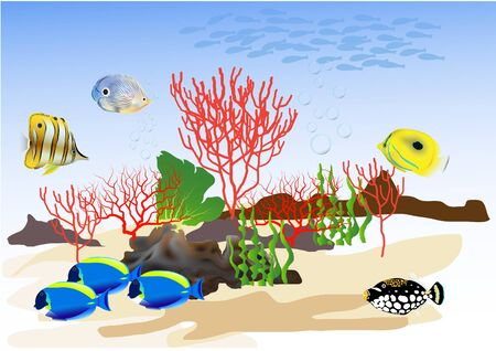 The beautiful underwater world with colorful fish. Illustration