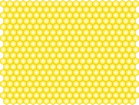 Vector illustration of honey background