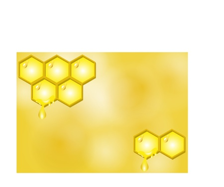 Vector illustration of honey background Vector