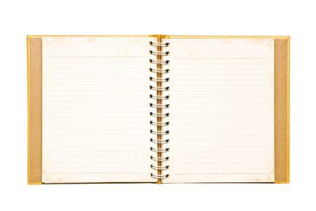 The golden notebook.
