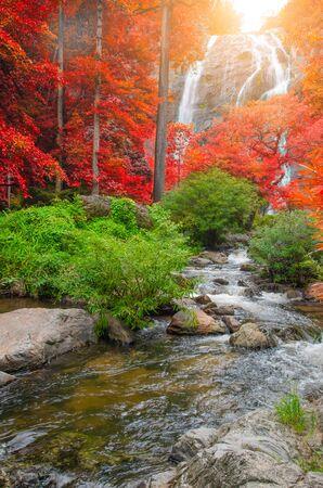 Wald im Herbst mit Fluss und Wasserfällen. Im Herbstwald gibt es schöne Flüsse und Wasserfälle. Wilder Herbst mit schönen Flüssen und Wasserfällen.