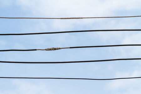 powerline: Wires arranged on a background of the sky.
