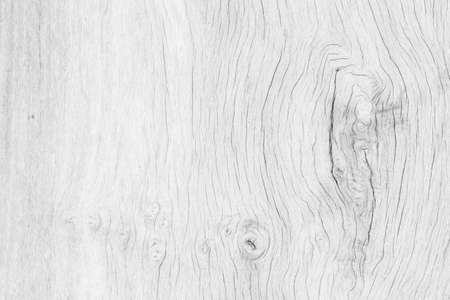 Patterned Hardwood texture background in white color. photo