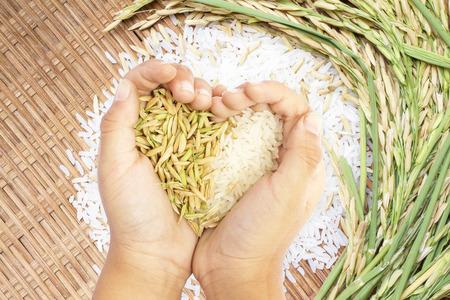 arroz: El arroz blanco y marrón, celebrada en la mano en forma de corazón sobre fondo blanco arroz. Foto de archivo