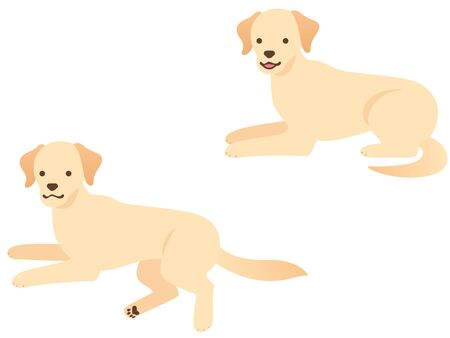 Illustration of two Labrador Retrievers (lie down and relax)
