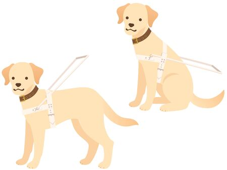 Guide dog illustration set (sitting and standing) Ilustração