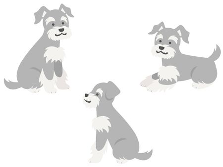 Three miniature schnauzers whole body illustration set in sideways sitting and lying down pose