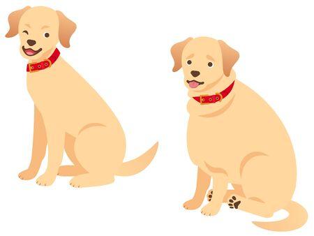 Illustration set of a fat dog and a Standard body dog