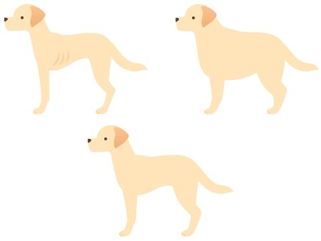 Illustration icon set of three types of dogs (obese / standard / slim)
