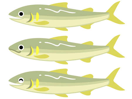 Illustration of three ayu, sweetfish (open mouth, closed mouth, smiling) Vetores