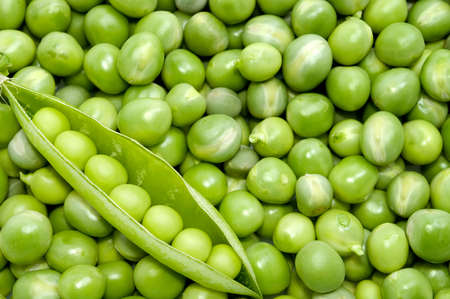 directly above: Fresh green pea pod on peas background - directly above shot Stock Photo