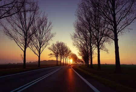 Sunset on the road with silhouette of trees and car in the middle.