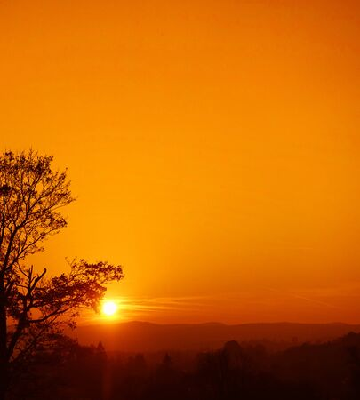 Sunset in mountains with silhouette of tree in vibrant orange color. Lots of copy space.