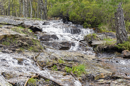 landscaping riverside: Guadarrama Mountains. Spain. Beautiful succesions of waterfalls, following each other, through the forest. Stock Photo