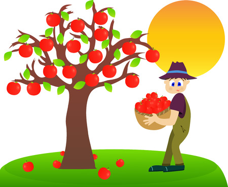 harvesting: Illustration of a farmer harvesting apples.