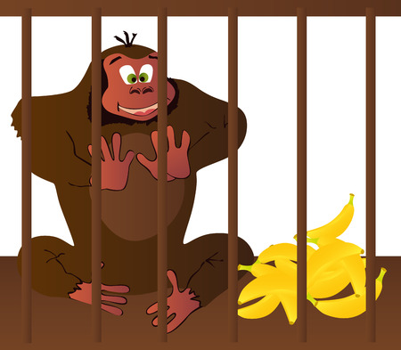 illustrated: Vector illustrated cartoon gorilla in a cage.