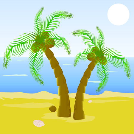 cockle: Vector illustrated beautiful beach with palm tree, with ocean on the background