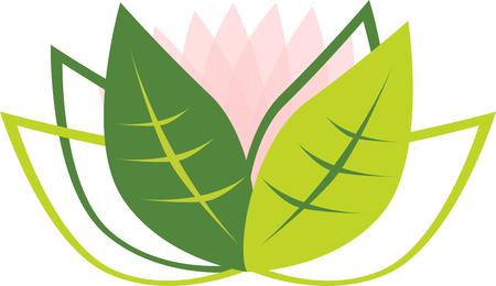Vector illustration of lotus flower on white.