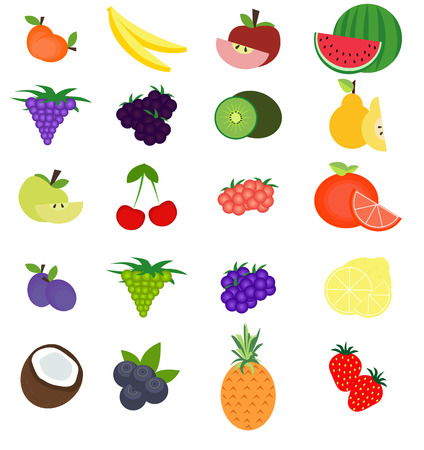 coco: Set of fresh fruits. Vector collection for your design.