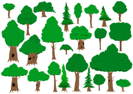 green plants: Vector illustrated collection of trees isolated on white background.