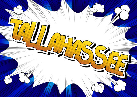 tallahassee: Tallahassee - Comic book style word on comic book abstract background.
