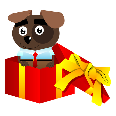Cartoon illustrated business dog in a gift box. Illustration